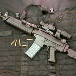 Gun Profile