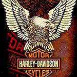Harley davidson indonesia