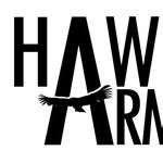 Hawk Arms LLC