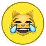 😹 Hilarious Animals 🐶