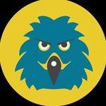 Hawks- Offbeat Adventure Tours