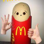 The Hungry Potato
