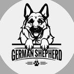 Ig German Shepherd