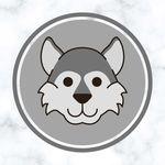 🐺 Husky Daily Content 🐺