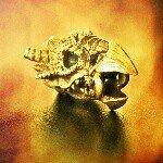 EDC by Frank 🔪🔦⌚✒
