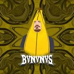 BVNVNVS