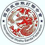 IWSF Wushu Sanda
