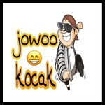 JOWO KOCAK (JOKO)