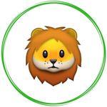 Lions 🦁 Love ♥️ Life 🦁  ⤴