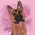 Lucy The German Shepherd