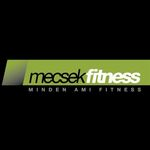 Mecsek Fitness és Wellness
