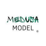 Medusa Model