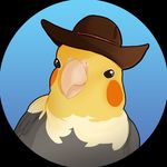 FOLLOW FOR DAILY BIRD MEMES! 🦜