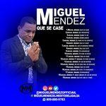 Miguel Mendez Salsa
