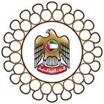 وزارة المالية   الامارات