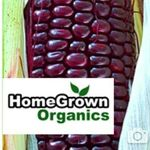 Homegrown Delivers