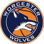 Worcester Wolves Basketball