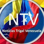 Noticias Trigal Venezuela 🇻🇪