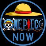One Piece Community ♥️