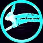 Pahokeesports, LLC.