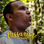 Passarim da Amazônia