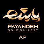 Payandeh Gold Gallery  (AP)