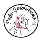 Peón Golondrina