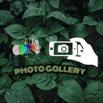 PHOTO GALLERY 🔵