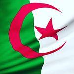 Algerian Photographers🇩🇿