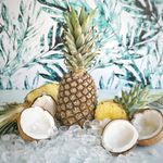 Shanna | Pineapple and Coconut
