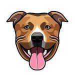 Pitbull Puppies Page!