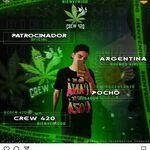 DS POCHO 420
