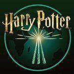 Potter Maniac_ ( 🎯15,000)