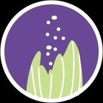 Rae Dunphy Aromatics Ltd