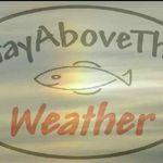StayAbovetheWeather Wildlife