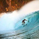 Sick Surfers 🤙🏻