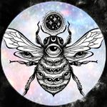Spirit Nectar