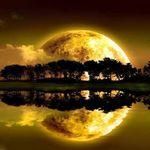 Sri Lanka 💚 PARADISE on Earth