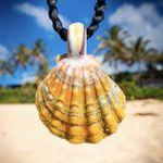 Sunrise Shells Hawaii