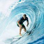 surfloyal