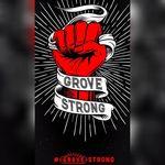 The Grove STL