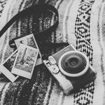 Photography Lover 📸