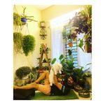 Gaurav   Plant Enthusiast