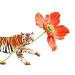 Tiger Flower Art Prints