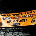 Tigers World Tampa