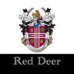 Toad N Turtle Red Deer