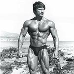 Fitness / Bodybuilding