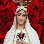 Tudo em Maria 🌷