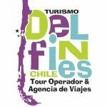 Turismo Delfines La Serena
