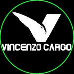 Envios Vincenzo Cargo LLC